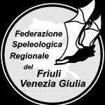 Logo FSR-FVG